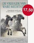 De vreugde van ware meditatie